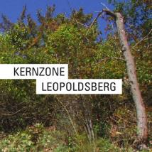 KZO_Leopoldsberg_screen